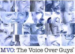 MVO: The Voice-Over Guys 2017